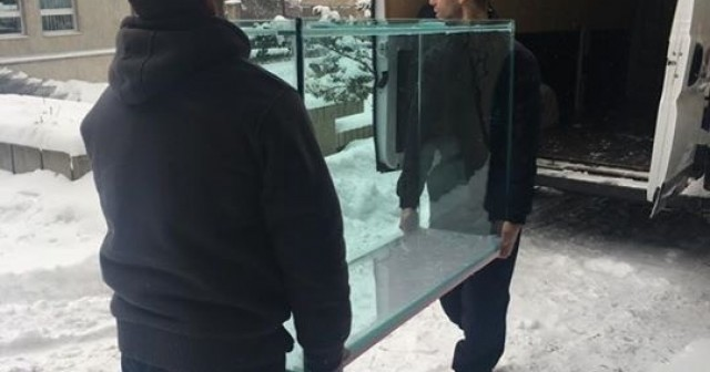 Selidbe akvarijuma korak po korak